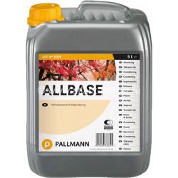 Allbase - základní lak