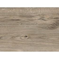 Sun Bleached Oak - AMTICO FIRST - vinylová podlaha