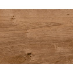 English Oak - AMTICO FIRST - vinylová podlaha