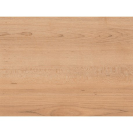 Warm Maple - AMTICO FIRST - vinylová podlaha