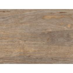 Bleached Elm - AMTICO FIRST - vinylová podlaha