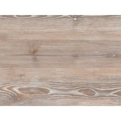 Worn Ash - AMTICO FIRST - vinylová podlaha
