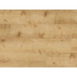 DUB BELFORT 60176 - Balterio Senator laminátová plovoucí podlaha