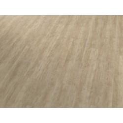 Jilm skandinávský světlý 4V 30110 - CONCEPTLINE CLICK - vinylová podlaha se zámkovým spojem