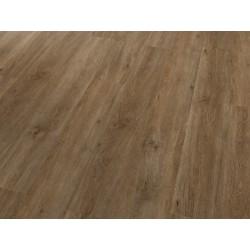 Dub rustikal 4V 55201 - PROJECTLINE CLICK - vinylová podlaha