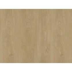 DUB CHAMPAGNE - ECOLINE HDF - vinylová podlaha CLICK