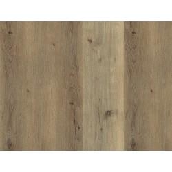DUB TRENTINO - ECOLINE HDF - vinylová podlaha CLICK