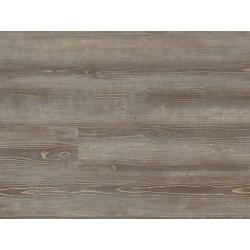 Grey Pine 5979 - EXPONA DOMESTIC - vinylová podlaha